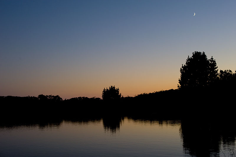 new-moon-at-pond-copy