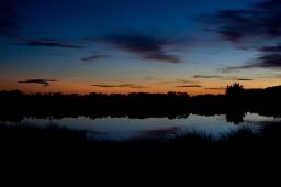 pond-horizon-copy