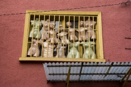 busts-in-window