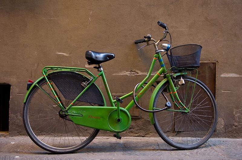 green-denise-9x13