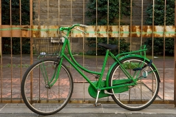green-stripe-9x13