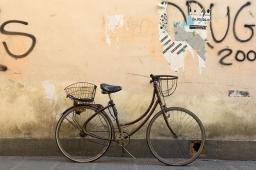 wire-basket-9x13