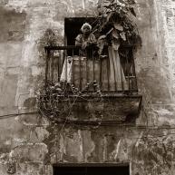 window-copy