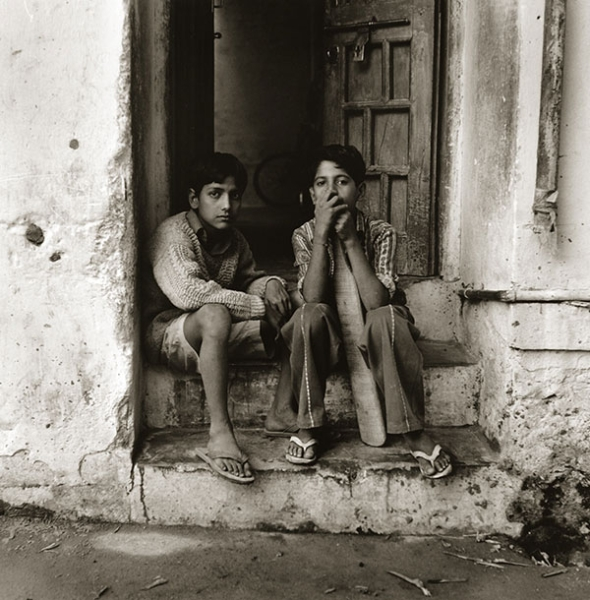 cricket-friends-udaipur