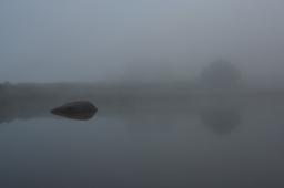 Fog-Pond.jpg
